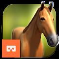Dream Horse APK for Bluestacks