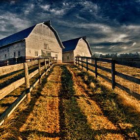 Sky Brook Farms by Mark Turnau - Landscapes Prairies, Meadows & Fields
