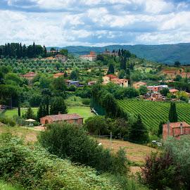 Tuscany by Mihai Toropoc - Landscapes Travel ( hills, vineyard, tuscany, toscana, olives trees, green, travel, landscape, italy, olives )