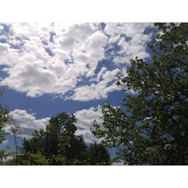 Nature Is Beautiful by Lauryn Ann - Landscapes Weather ( cool, clouds, skyline, nature, beautiful, amateur, trees, cloudscape, usa, photography )