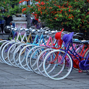 Just Marched....... by Joni Alir - Transportation Bicycles