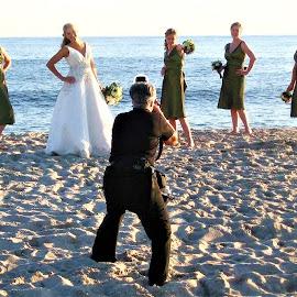 by Donna Van Horn - Wedding Groups (  )
