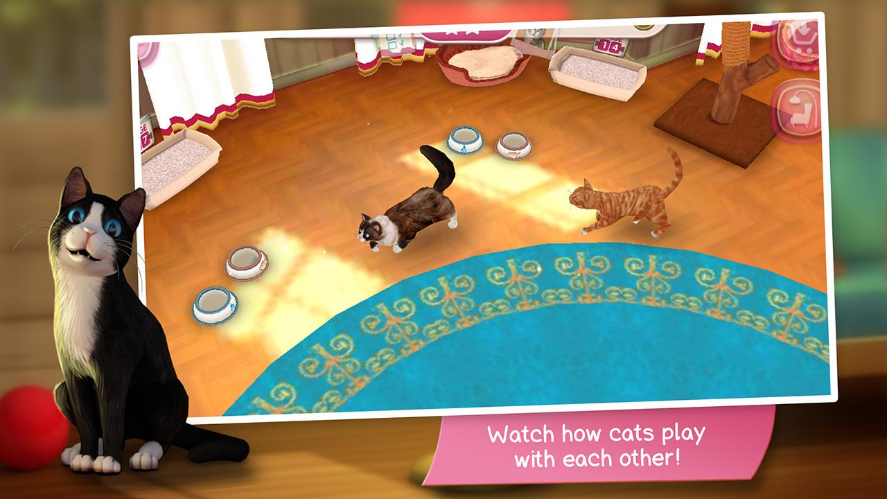 CatHotel - Hotel for cute cats Screenshot 6