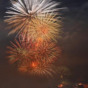 The Finlal One by Kamila Romanowska - Public Holidays New Year's Eve ( new year, australia, fireworks, celebration, sydney )