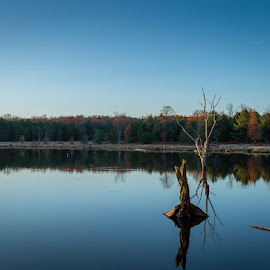 by Dave Bradley - Novices Only Landscapes
