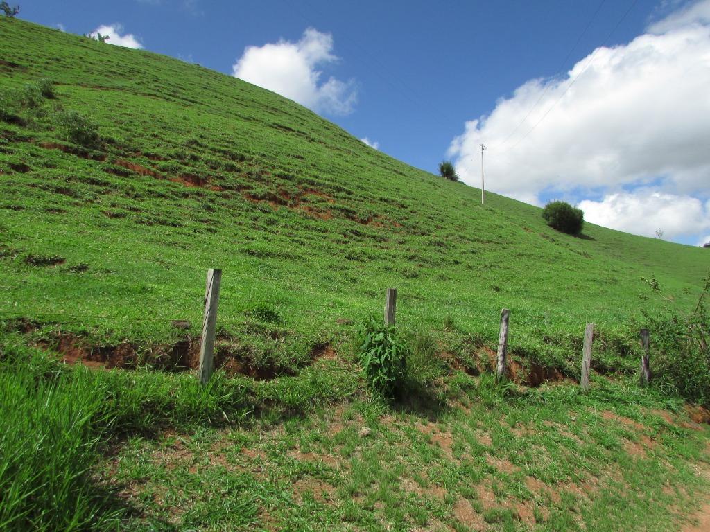 Fazenda / Sítio à venda em Secretário, Petrópolis - Foto 4