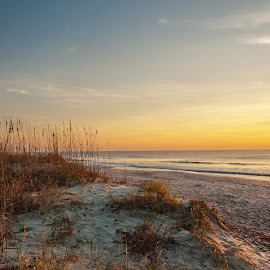 Morning From Huntington Beach by Roy Walter - Landscapes Travel ( hiuntington beach state park, ocean, sunrise, beach, atlantic, south carolina )