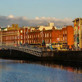 Dublin. Ireland by Elena Lashneva - City,  Street & Park  Vistas