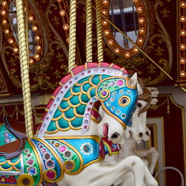 Merry Go Round by Michelle Bergeson - City,  Street & Park  Amusement Parks ( ride, merry go round, colorful, horse, seahorse )