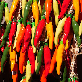 Peppers by Dee Haun - Food & Drink Fruits & Vegetables ( hanging, orange, peppers, red, green, food, vegetables, multicolor, fruits and vegetables, yellow,  )