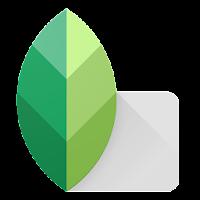 Snapseed For Laptop (Windows/Mac)