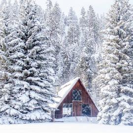 Snow vellage by Angel Bradshaw - Landscapes Travel