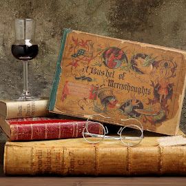 A BUSHEL OF MERRYTHOUGHTS by Ascanio Tealdi - Artistic Objects Still Life ( studio, wine, old book, glasses, still life, spectacles, book, glass, ascanio tealdi )