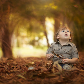 Amused by Nature's Simplicity by Nemanja Stanisic - Babies & Children Child Portraits ( sharpmemories, winter, nature, fallingleaves, amusement, autumn, fall, floridaphotographer, forest, amused, leaves, boy, littleboy )