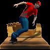 Skate Dude