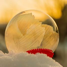 Frozen soap bubble  by Anna Guðmundsdóttir - Abstract Macro ( 2018, iceland, soap bubble, snjór, ice, anna guðmundsdóttir, ísland, 20.jan, show, frozen soap bubble, frozen,  )