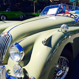 Jaguar by Lope Piamonte Jr - Transportation Automobiles