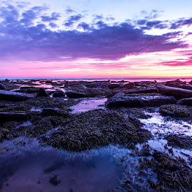 Blue Bay by Mel Stratton - Landscapes Beaches ( water, seascape, sunrise, beach, rocks )