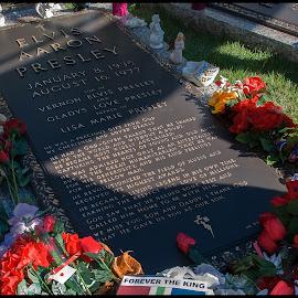 Memphis  Elvis Presley's Graceland by Fernand De Canne - City,  Street & Park  Cemeteries ( streetphotography )