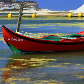 Vai com Deus by Gil Reis - Transportation Boats ( water, life, nature, boats, travel, lagoons, places, portugal )