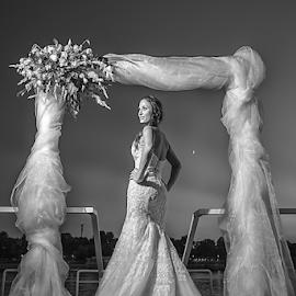 svadba by Dejan Nikolic Fotograf Krusevac - Wedding Bride ( vencanje, wedding, svadba, night, bride, photo-fotograf.com, evening, danube, river, fotograf )