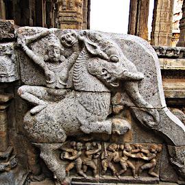 mythical warrior by Venkat Krish - Buildings & Architecture Architectural Detail ( #warrior, #architecture, #stone, #sculpture, #temple, #myth, #carve )