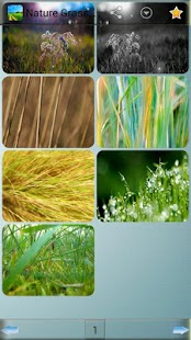 Nature Grass Wallpapers - screenshot