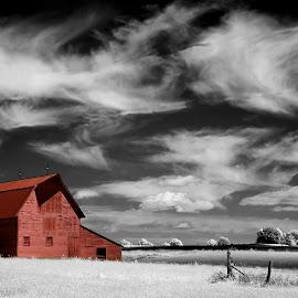 Red Barn by Ken Smith - Landscapes Prairies, Meadows & Fields ( barn, infrared, landscape, nebraska )