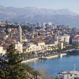 Split, Croatia by Luka Vuković - City,  Street & Park  Street Scenes ( riva, seas, croatia, split, palace, palms )