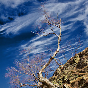 by Stephen Hooton - Landscapes Cloud Formations ( lakes, places )