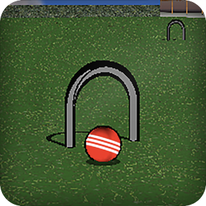 Croquet Pro For PC / Windows 7/8/10 / Mac – Free Download
