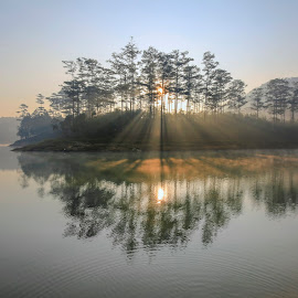 Island rays by Trang Võ - Uncategorized All Uncategorized ( ray, mountain, fog, trees, lake, pine )