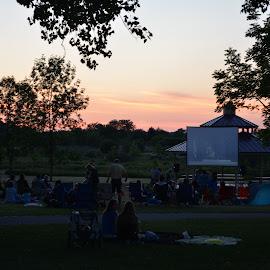 Minions in the park by Thomas Fitzrandolph - City,  Street & Park  City Parks ( sunset, parks, movies, niagara county ny, nikon d5200, lockport ny )