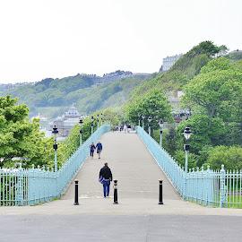by Eloise Rawling - Buildings & Architecture Bridges & Suspended Structures ( railings, leading lines, bridge )