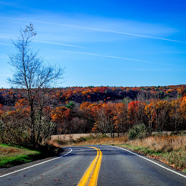 Morning drive by Shaun Edwards - Landscapes Mountains & Hills ( mountains, fall colors, fall morning )