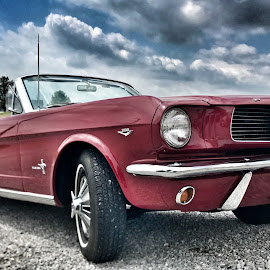 Going Topless! by Lorna Littrell - Transportation Automobiles ( mustang, old car, cars, old cars, antique, red cars )