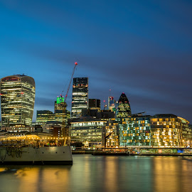 City of London Skyline  by Benjamin Arthur - Buildings & Architecture Office Buildings & Hotels ( the walkie talkie, city of london, london, the cheese grater )