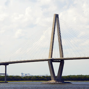 Ravenel Bridge, Charleston, SC by Kristina Weber - Buildings & Architecture Bridges & Suspended Structures ( charleston, new, arthur ravenel jr., suspension, pwcbridges, south carolina )