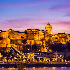 Buda Castle at Sunset by Mo Kazemi - Buildings & Architecture Public & Historical ( budapest hungary, castle, buda castle, night, nightscape, budapest, purple sky, night photography, hungary, architecture )