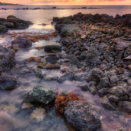 by Heather Allen - Landscapes Beaches (  )