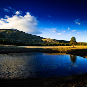 Night and Day by Preston Trauscht - Landscapes Travel ( clouds, reflection, mountain, beautiful, lake, landscape, aspen, tree, trees, gold, sunrise, pond, waterhole )