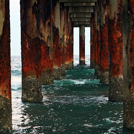 Peering through the Pier by Alycia Marshall-Steen - Landscapes Beaches ( atlantic ocean, sunset, framed ocean, pier, framed water, old florida, st augustine )