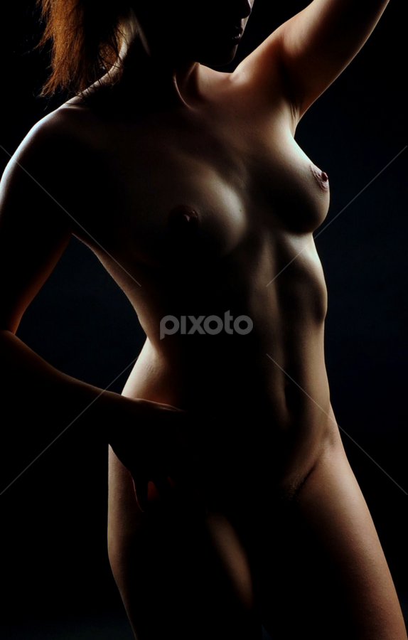 Shadows by Vineet Johri - Nudes & Boudoir Artistic Nude ( model, nude, art, dark, light, shadows )