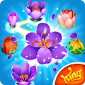 Blossom Blast Saga Flower Link APK for iPhone