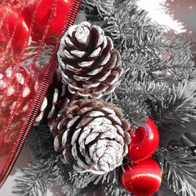 Noble Fir Wreath by Liz Pascal - Public Holidays Christmas