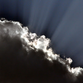 SUNRAYS #2 by Debanjan Goswami - Uncategorized All Uncategorized (  )
