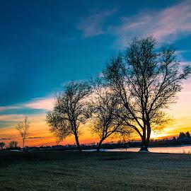 Sundown by Chad Roberts - Nature Up Close Trees & Bushes ( water, reflection, sky, sunset, sundown, cloud, sunrise, evening )