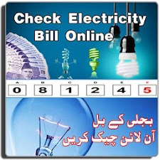Wapda Bills Online Check