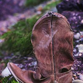 Cowboy Boot by Wiley Duckett - Digital Art Things (  )