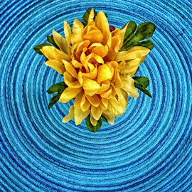 Floral Wake by Catherine Melvin - Abstract Patterns ( circular, blue, still life, sphere, yellow, floral )